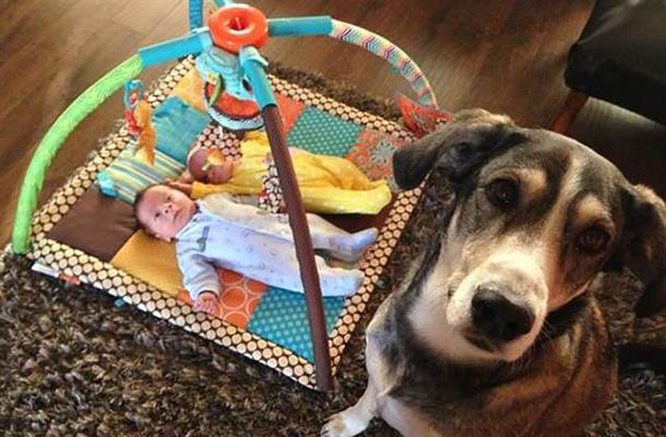 kutya-gyerek kapcsolat: Az idő