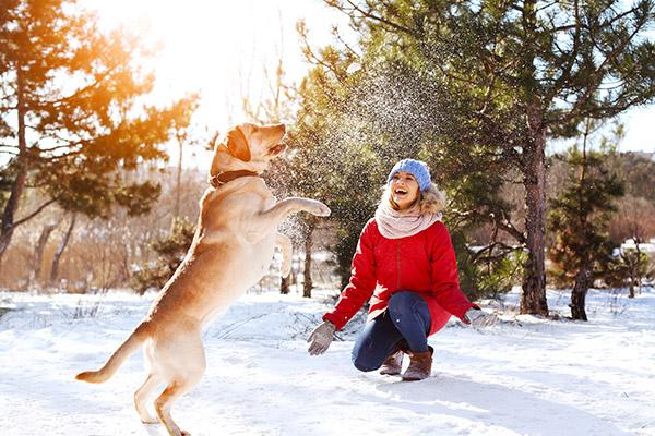 Téli kirándulás, játék a kutyával