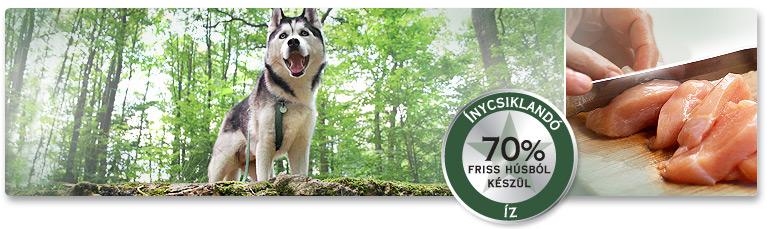 A kutya húsevő! PLATINUM teljes értékű kutyaeledelek