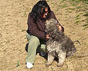 Braun Katalin ls válogatós kutyája véleménye
