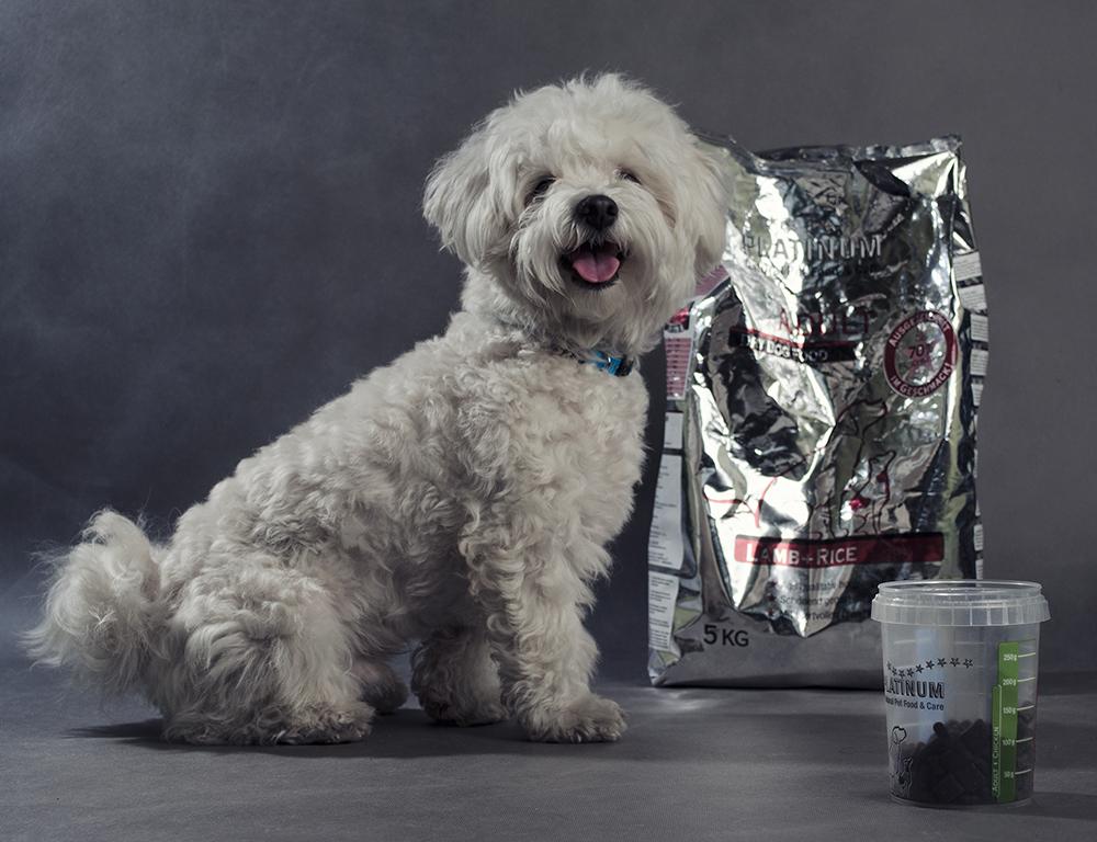 Gerő Anitaés Pedro véleménye a PLATINUM kutyatápról