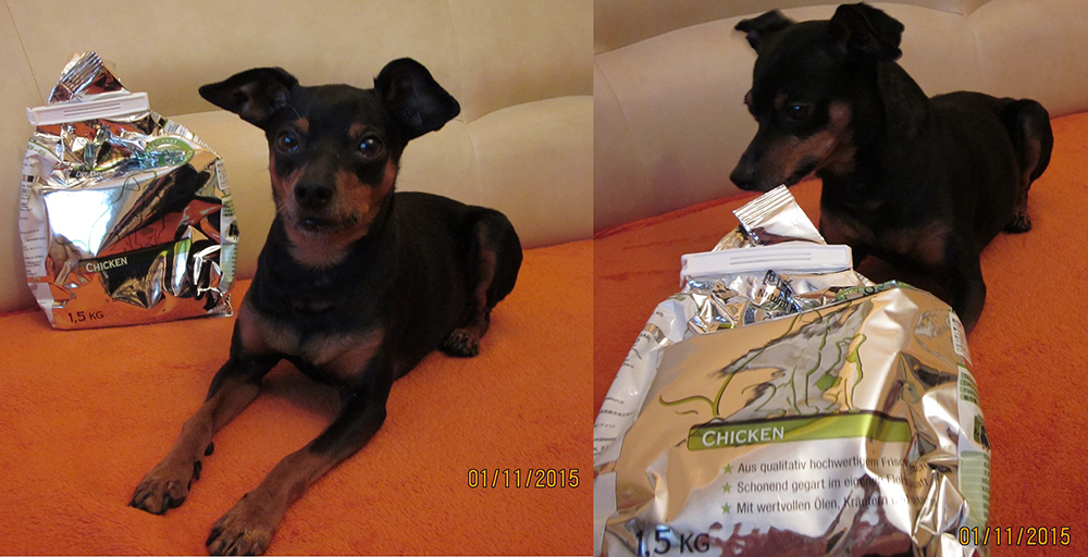 Varga Brigi véleménye a PLATINUM kutyatápról