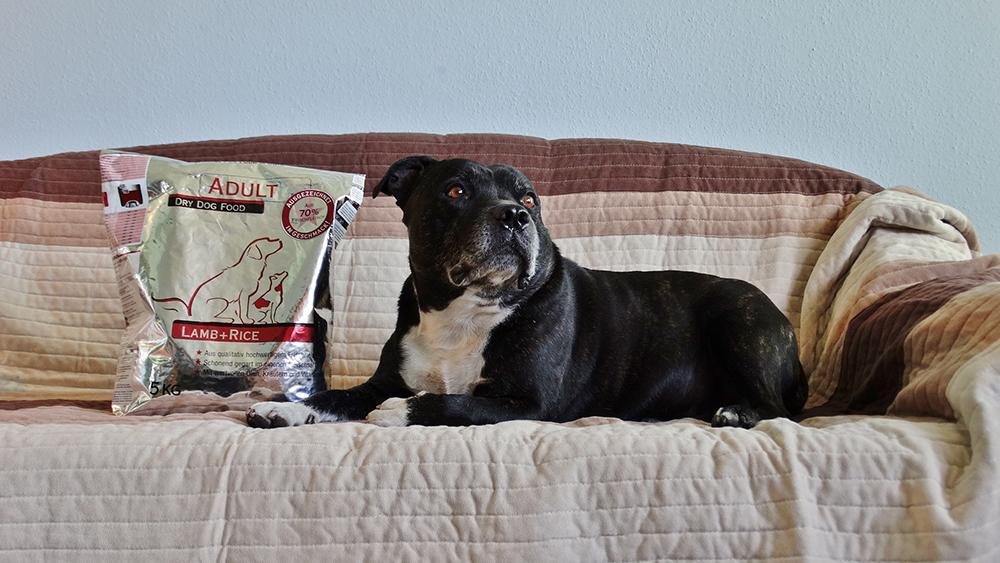 Székely Erzsébet véleménye a PLATINUM kutyatápról