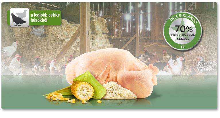 PLATINUM Adult Chicken - Csirke felnőtt száraztáp. A legjobb csirkehúsokból.