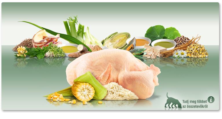 PLATINUM Adult Chicken - Csirke felnőtt száraztáp. A hagyományos tápok alternatívája.