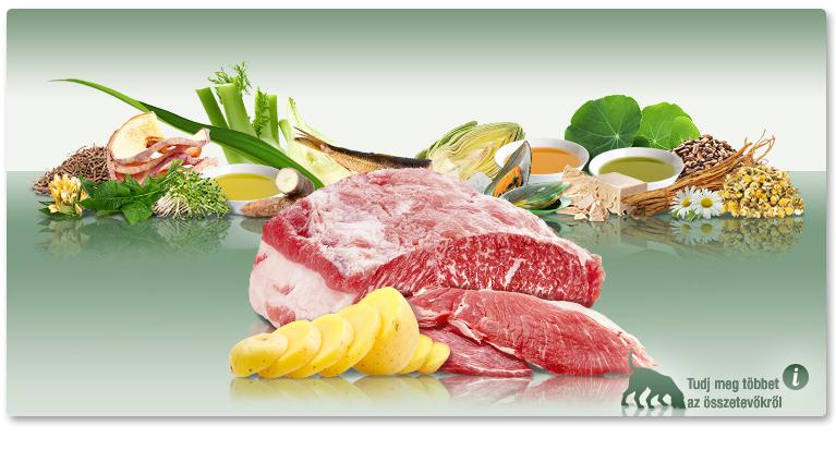 PLATINUM Iberico+Greens - Ibériai sertés+Zöldségek felnőtt száraztáp. A hagyományos tápok alternatívája.
