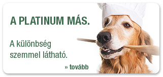 Kutyatáp, ami valóban több a hagyományos kutyaeledelnél